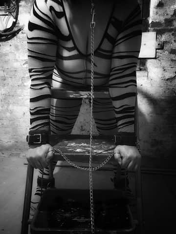 Me in zebra bodystocking cuffed and chained to a stepladder in the cellar